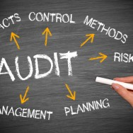 Forensic Accounting Investigation and Fraud Audit